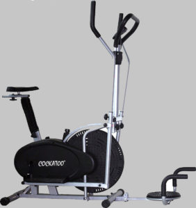 Cockatoo Imported Best Exercise Cycle in India