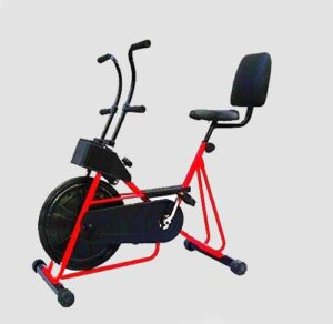 Leeway Exercise Cycle with Back Support